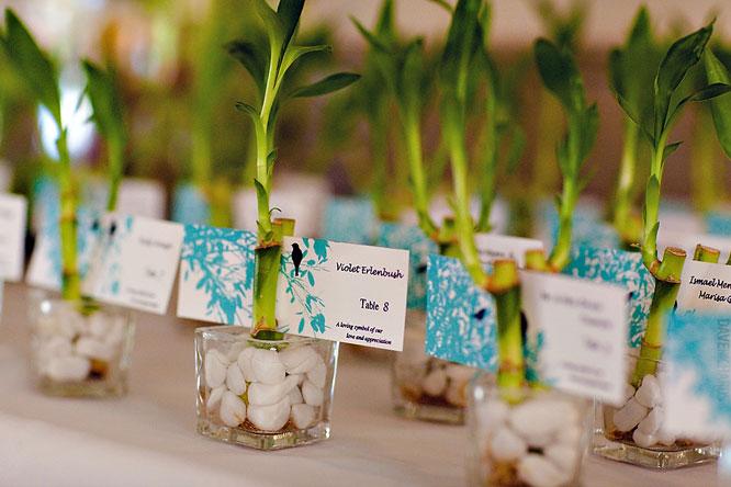 عروسی سبز 7 - ایدههایی جالب برای برگزاری یک جشن عروسی سبز