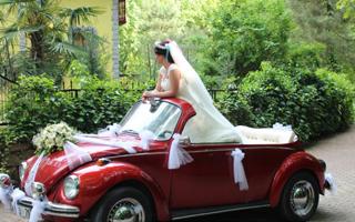 Screenshot 165 - مدل ماشین عروس متفاوت