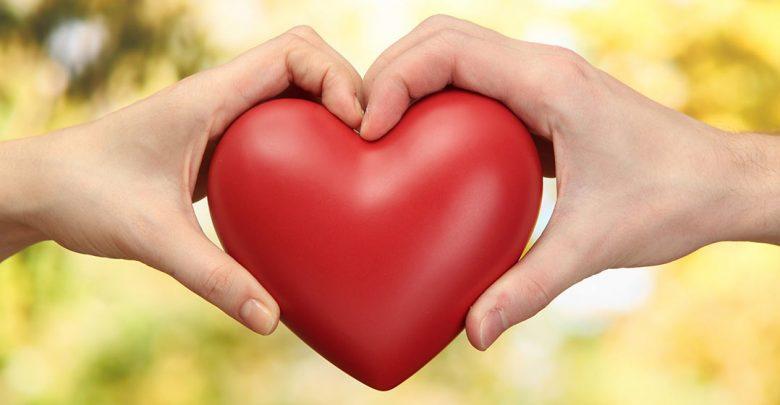 eshghlaw 780x405 - عشق چیست؟ چگونه بفهمیم عاشق شده ایم؟!