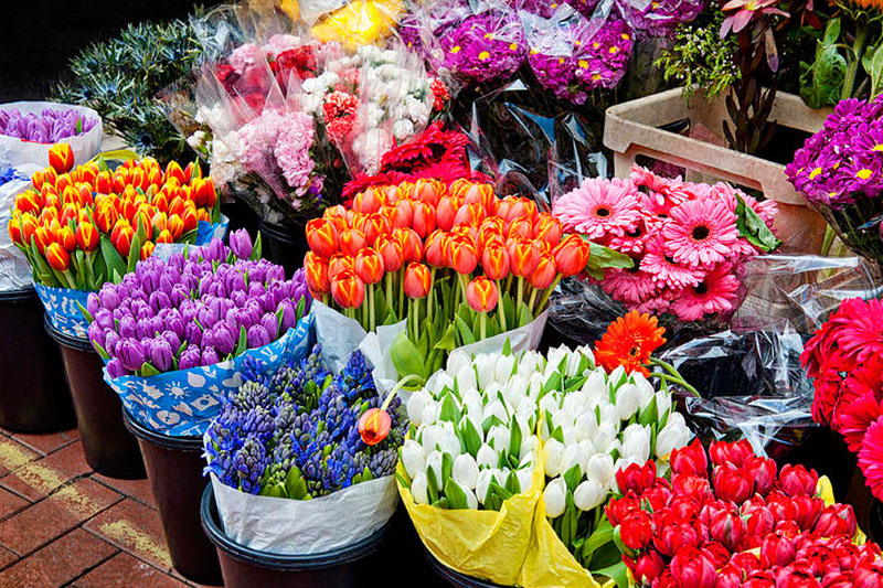 6 - دسته گل خواستگاری خاص یا سبد گل خواستگاری با گل مناسب ؟