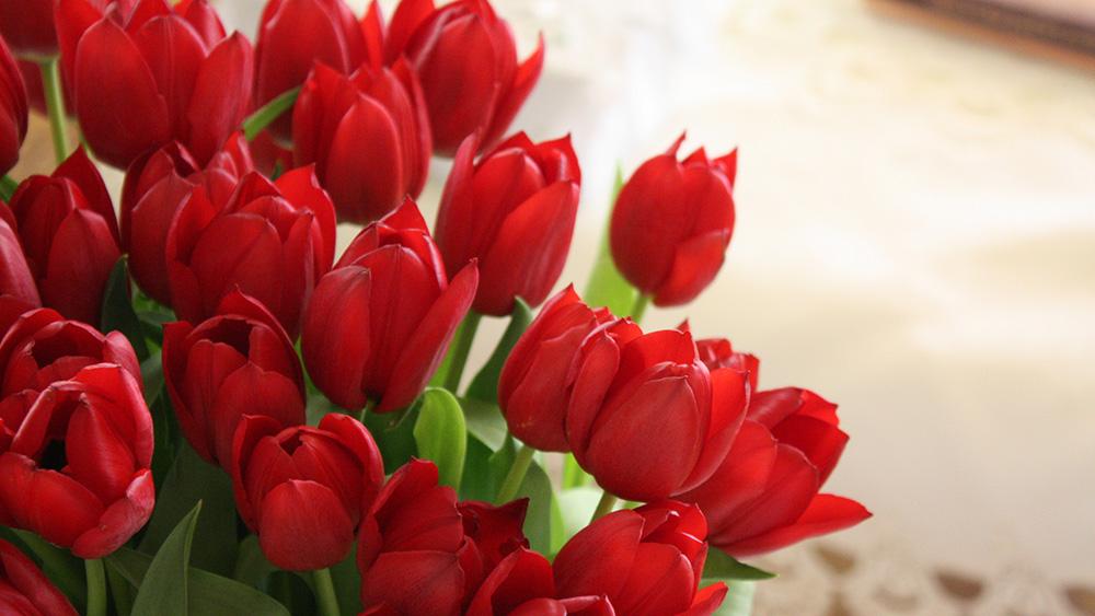 2 - گل هایی برای میهمانی ایرانی