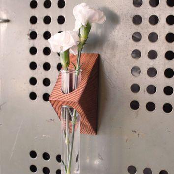 آزمایش گلدان11 - ایدههای جالبی برای ساخت گیفت