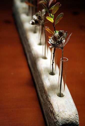 آزمایش گلدان14 - ایدههای جالبی برای ساخت گیفت