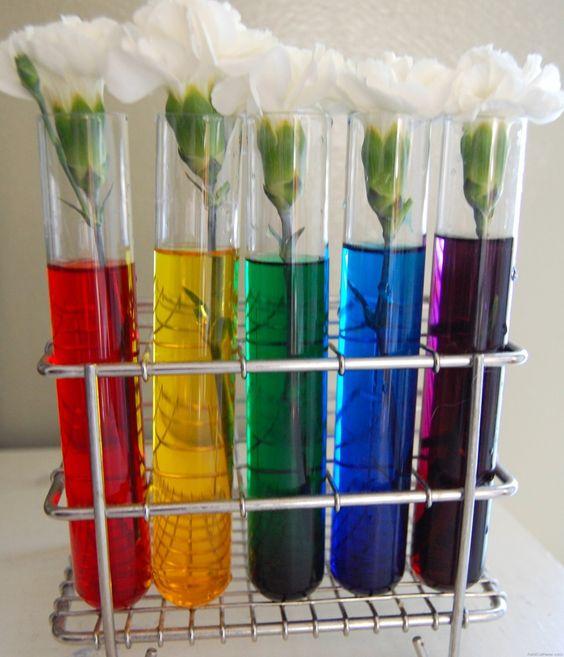 آزمایش گلدان8 1 - ایدههای جالبی برای ساخت گیفت