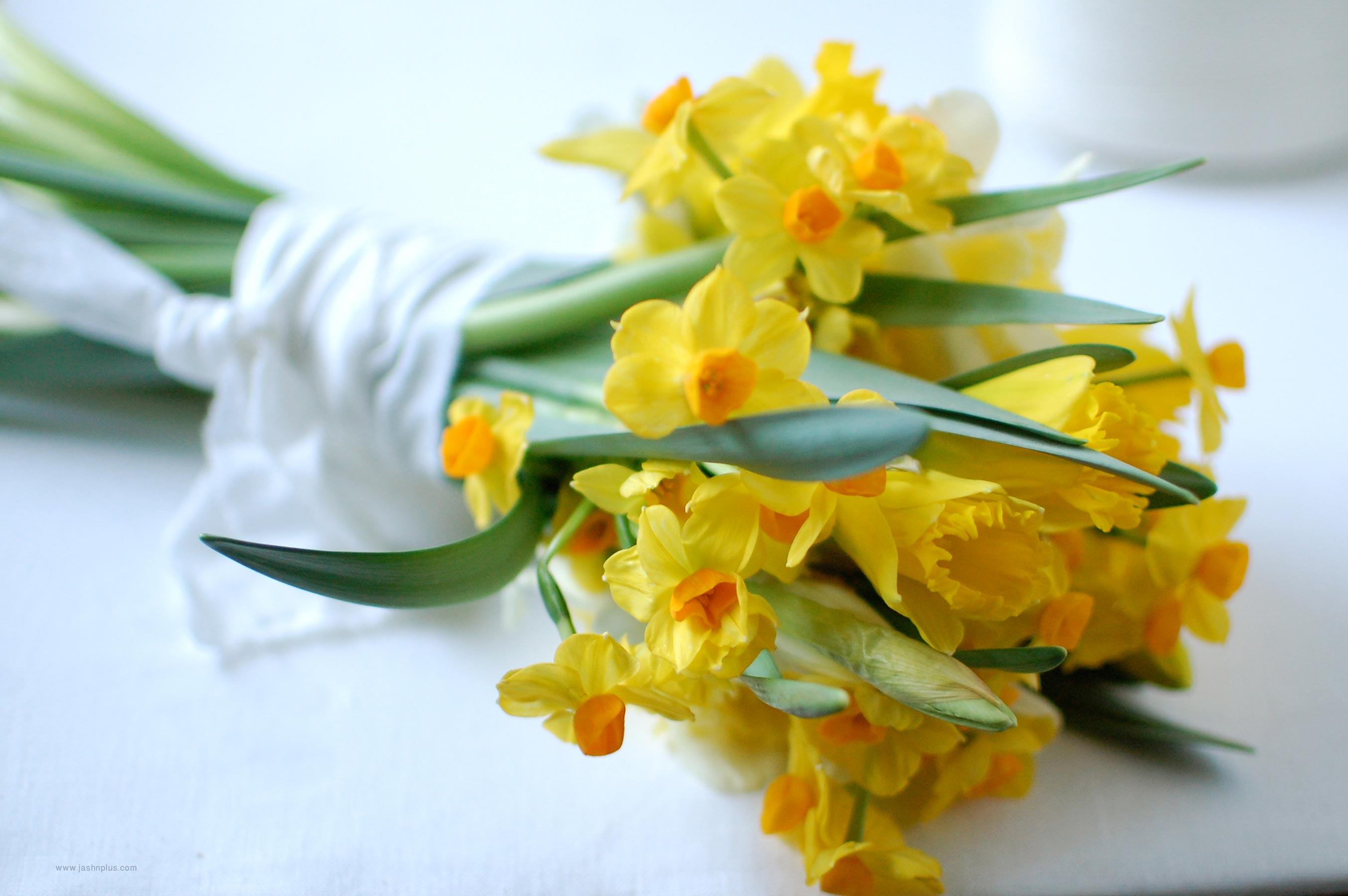 .jpg - گل هایی برای میهمانی ایرانی
