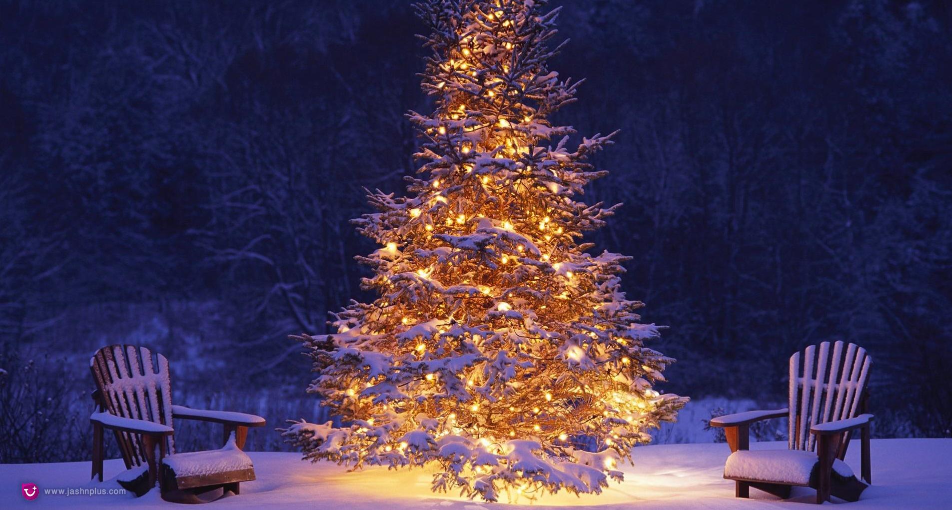 23 - کریسمس و یک میهمانی دور همی در روزهای سرد سال