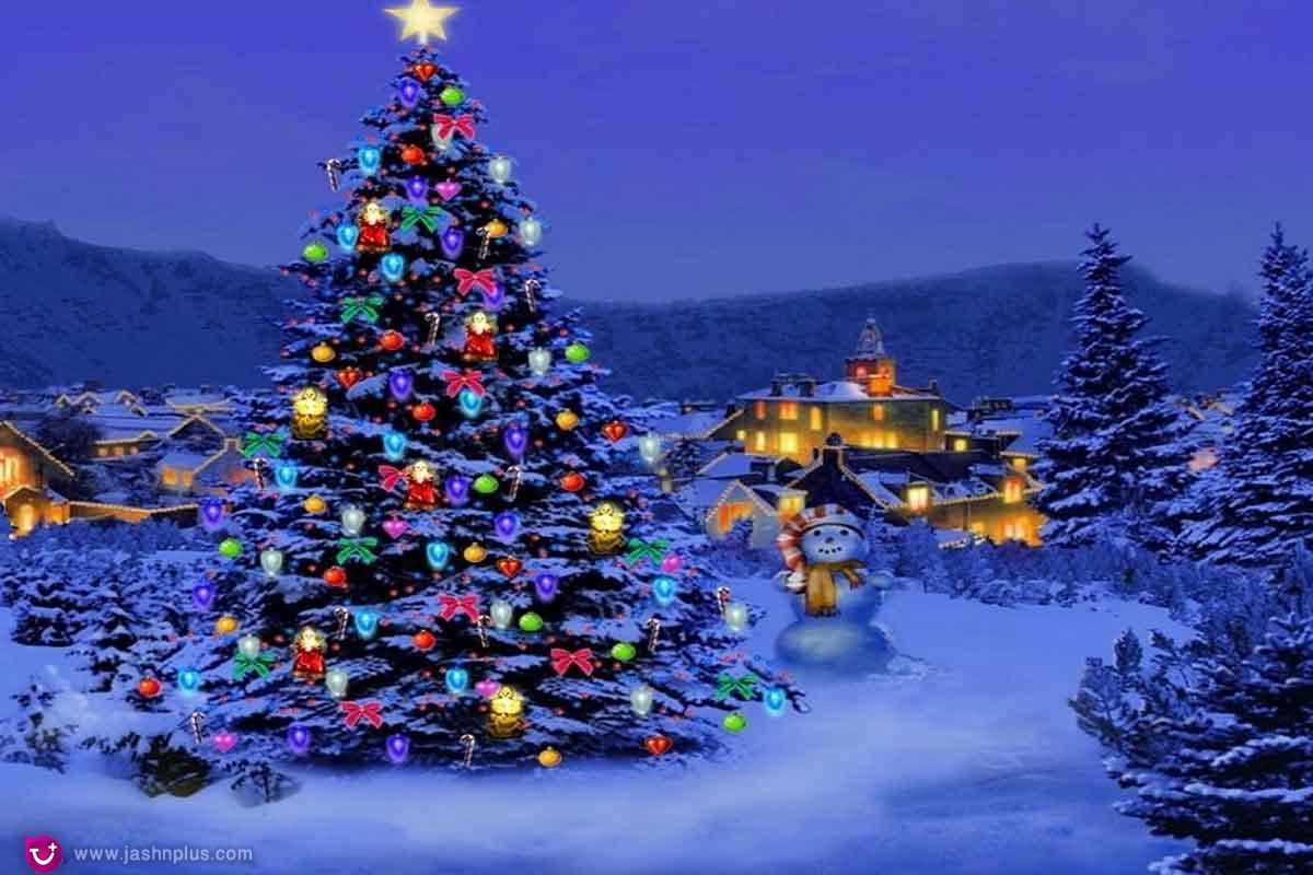 80139Christmas Trees4.alale .co  - کریسمس و یک میهمانی دور همی در روزهای سرد سال