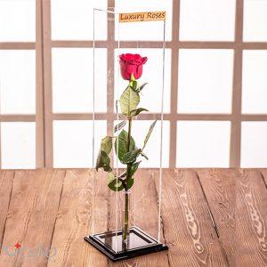 جعبه گل اِپیک