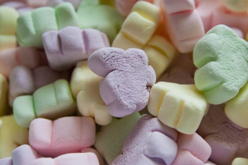 bunny marshmallow - مارشمالو چیست؟