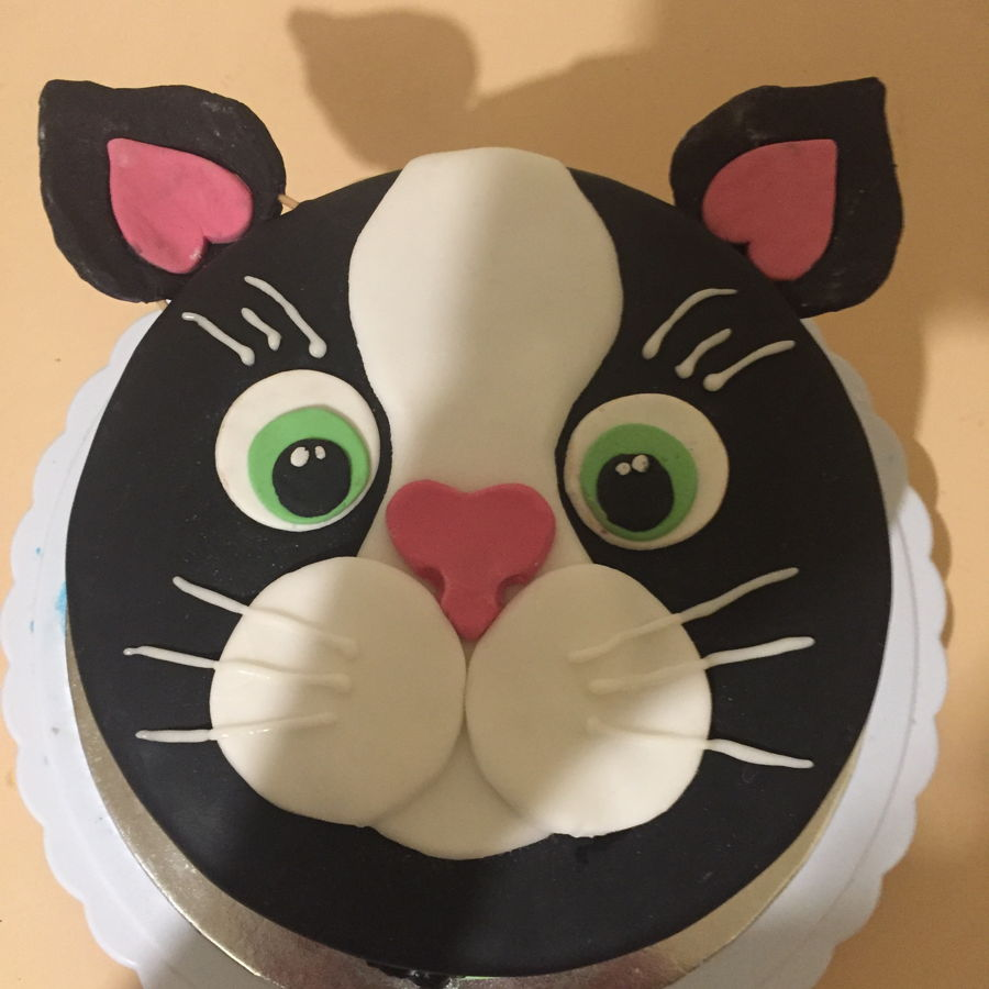 900 cat cake 99513978s6s - کیک تولد با تم کودکانه