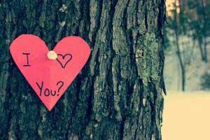 za4 2317 1 - چگونه سالگرد ازدواج یا تولد همسرمان را عاشقانه کنیم