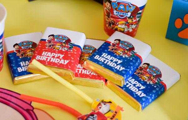 Tak Tak تم پاوپاترول 1 - اقلام تم تولد ، هرچیزی که برای یک جشن نیاز دارید