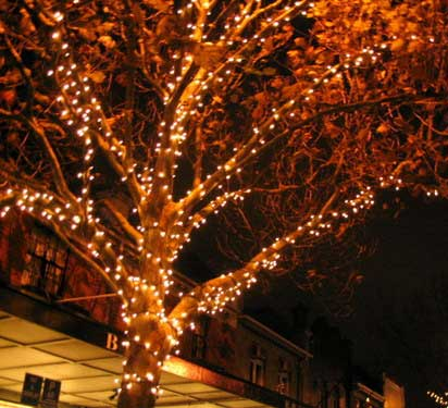 led string lighting for tree - ایده هایی برای جشن و مهمانی در فضای باز